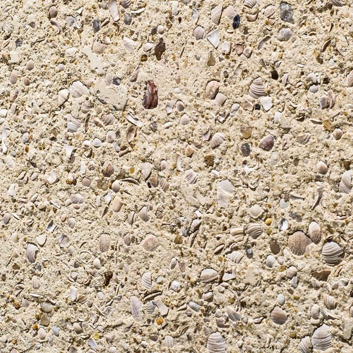Cimentício-Castelatto-conchas